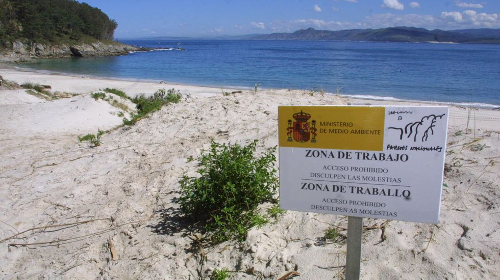 Playa de Figueiras, en Cíes