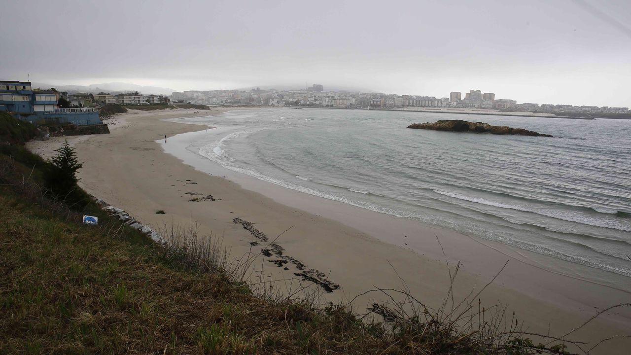 Perros en la playa de San Lorenzo de Gijón