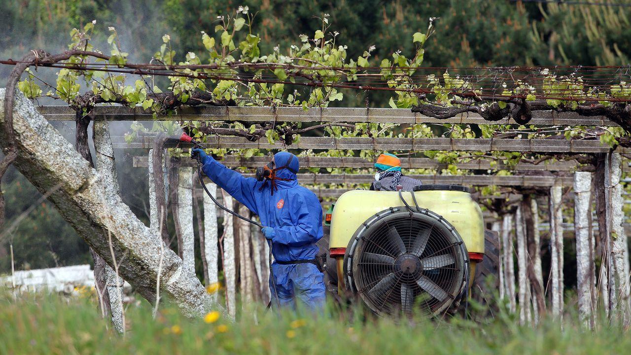 Trabajos de instalación de una marquesina en Vilardevós