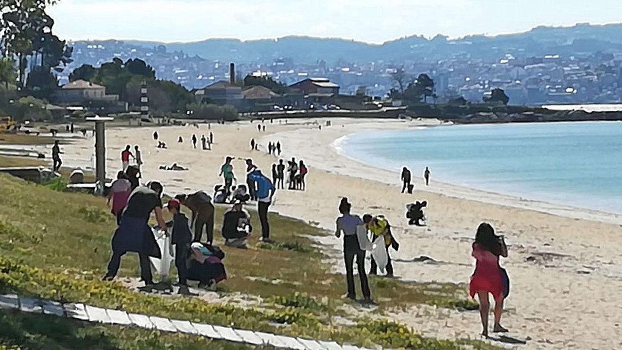 Reciclado en Asturias.El cetáceo, en la zona de la ampliación de El Musel