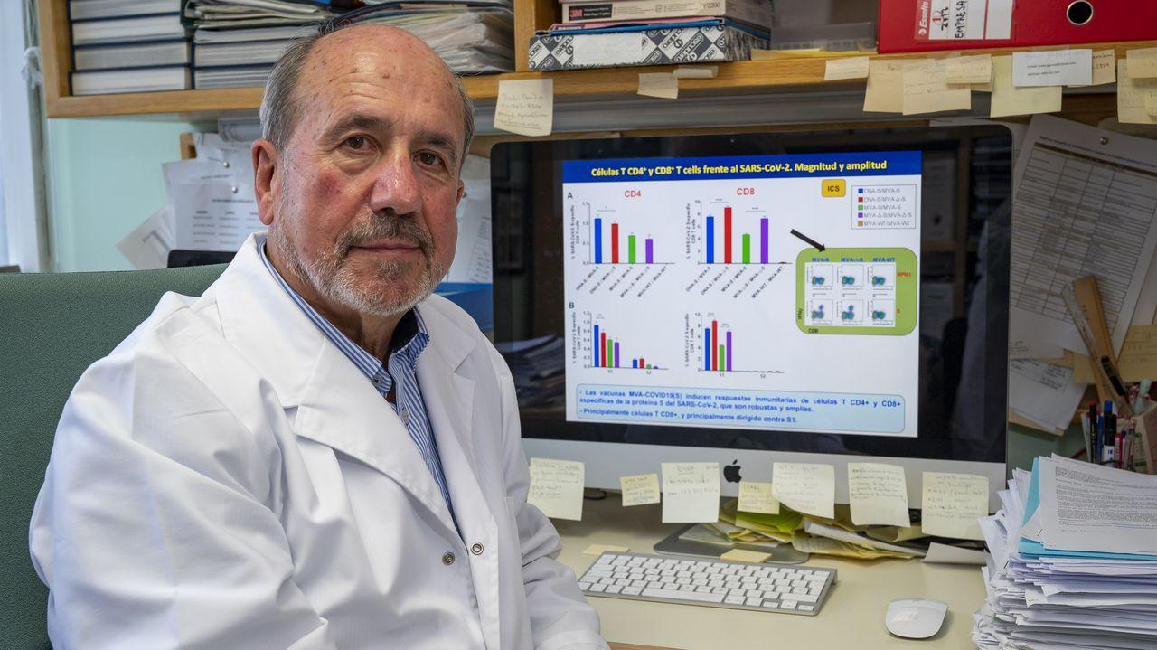 El virólogo Mariano Esteban trabaja en una vacuna contra el covid