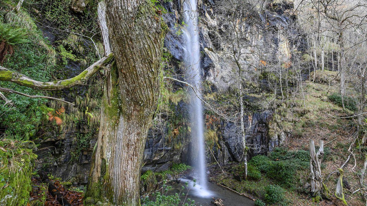 El arroyo de A Fervenza se precipita por una pared de roca caliza de unos treinta metros de altura