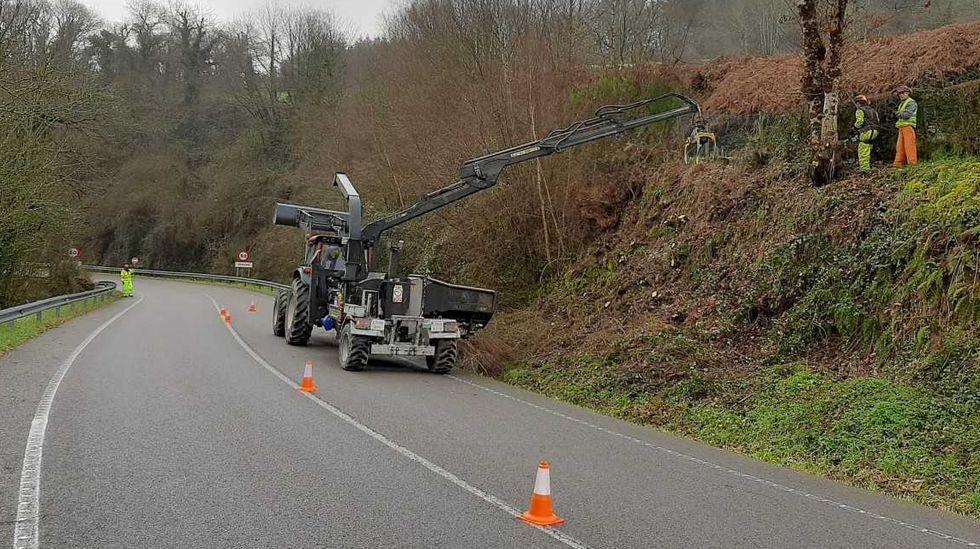 Trabajos de roza en carreteras de la Xunta
