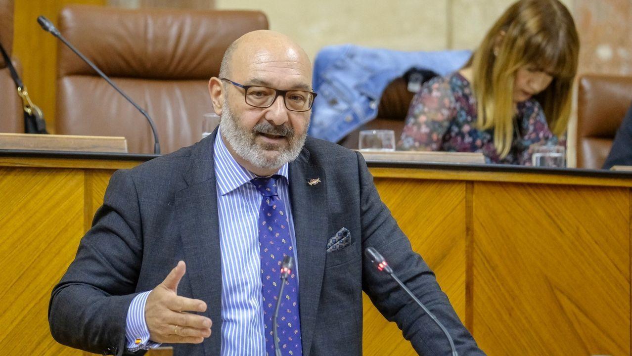 Alejandro Hernández, portavoz de Vox en Andalucía